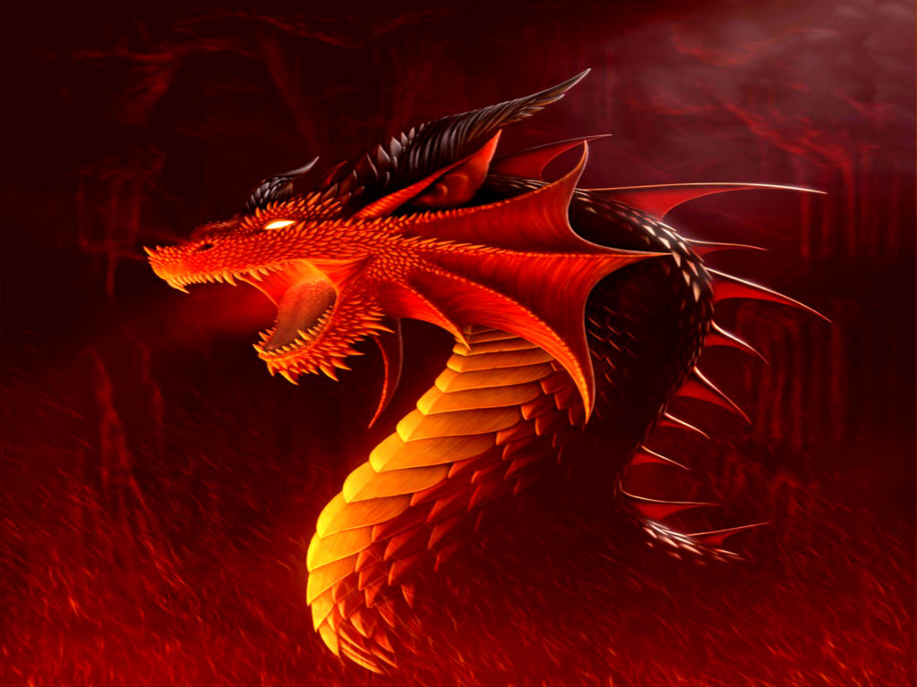Dragon wallpapers-4